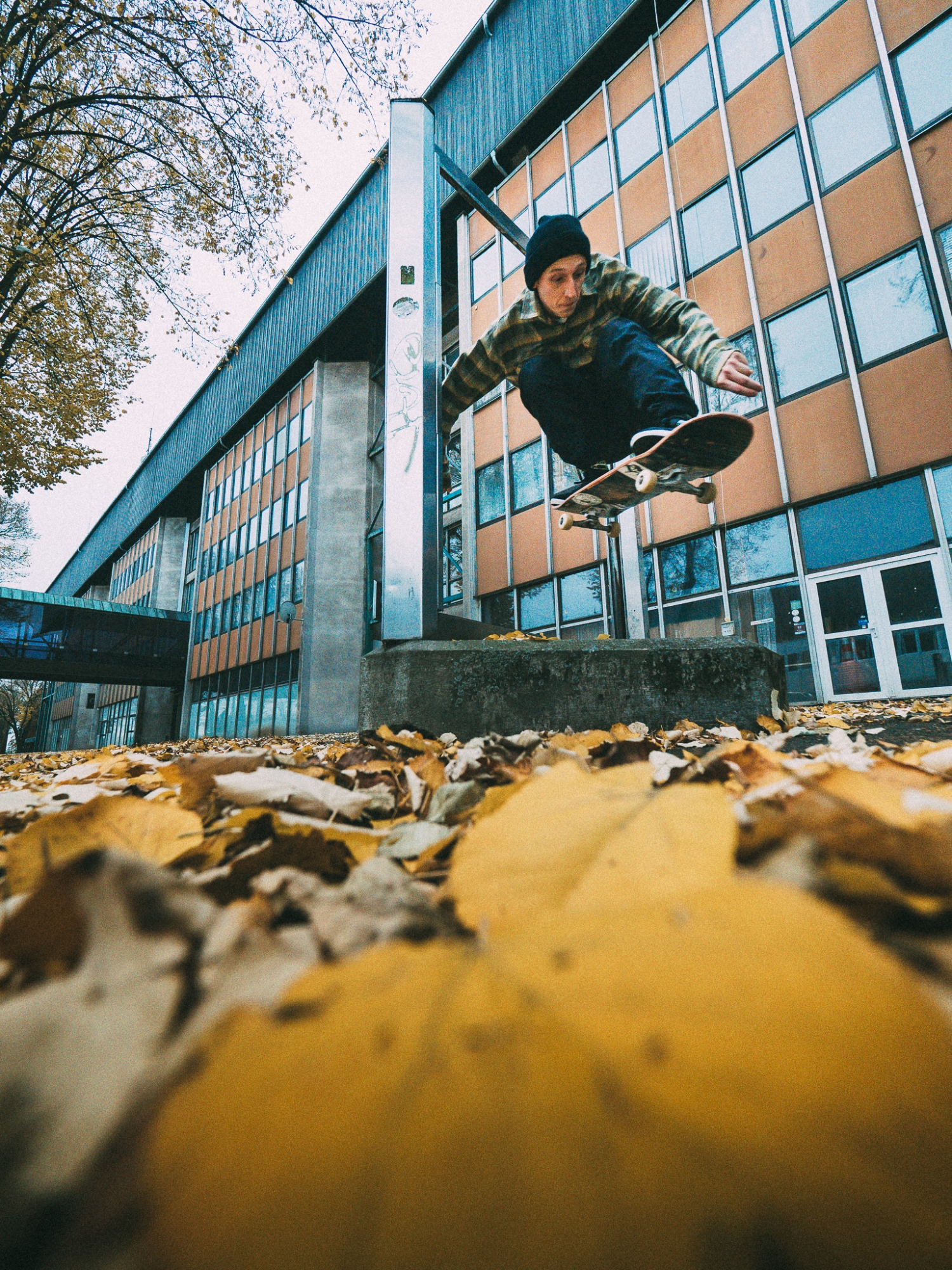 Hanzi Hellebrand - ollie through